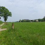 Twente, het Dal van de Mosbeek, 2016-5-28 18 landschap