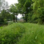 Twente, het Dal van de Mosbeek, 2016-5-28 5