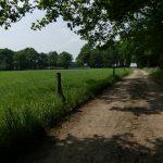 Twente, het Dal van de Mosbeek, 2016-5-28 51 landschap