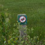 Twente, het Dal van de Mosbeek, 2016-5-28 82 verboden op plantjes te trappen